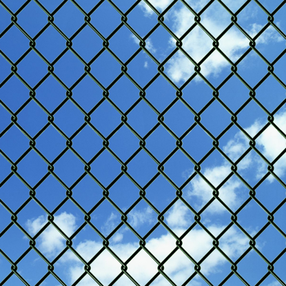"Picture of Chain Fence 4' 9"" x 49' 2"" Green"