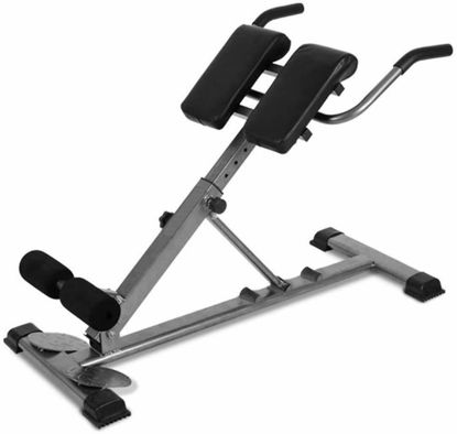 Picture of Home Gym Roman Chair Hyperextension Abdominal Bench