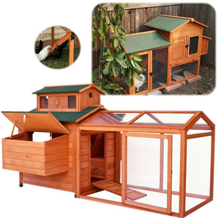 Picture for category COOP / HEN HOUSE